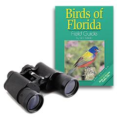 bird watching gear