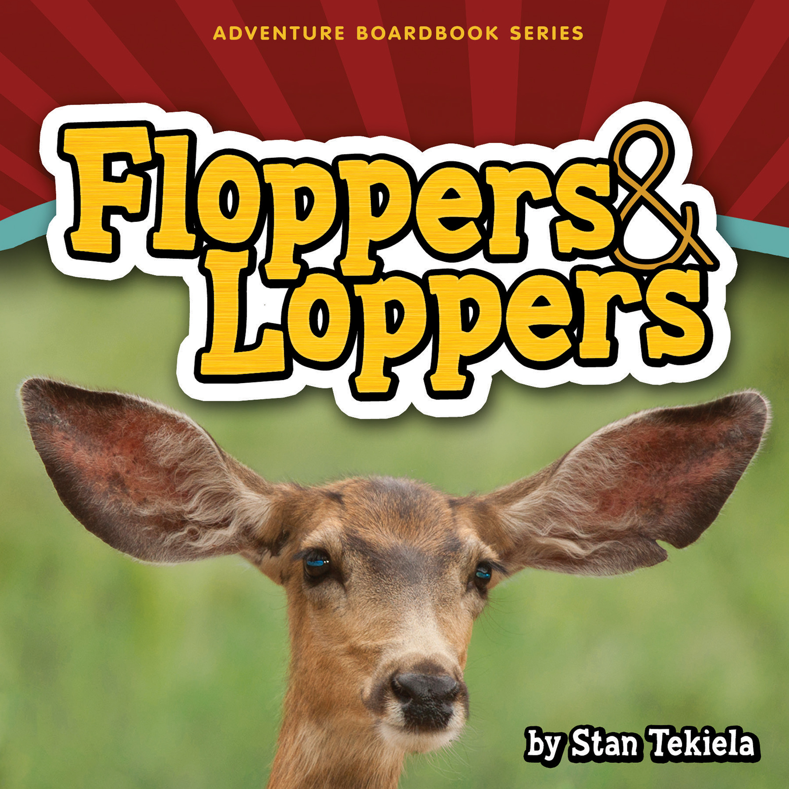 Floppers & Loppers, one of our best children's books